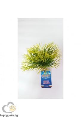 Sydeco - Растение Aquatic Grass, 10 см