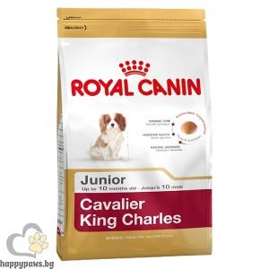 Cavalier King Charles Junior Пълноценна храна за подрастващи кучета - Специално за кученца Кавалиер Кинг Чарлз Спаниел - До 10 месечна възраст - 1.5 кг.