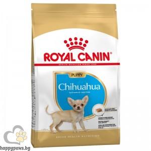 Chihuahua Puppy - нова опаковка