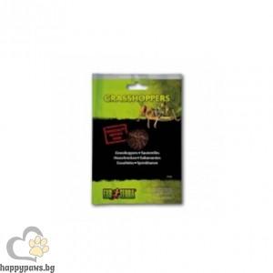 Exo Terra - Скакалци във вакуумна опаковка, 15 гр