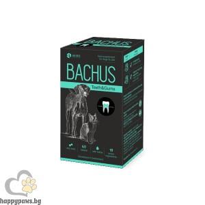 Bachus Teeth & Gums за зъби и венци на кучета и котки, 60 таблетки