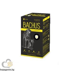 Bachus Immunity & Resistance за имунитет и устойчивост на кучета и котки, 60 таблетки
