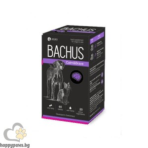 Bachus Calm & Brave за спокойни и смели кучета и котки, 60 таблетки