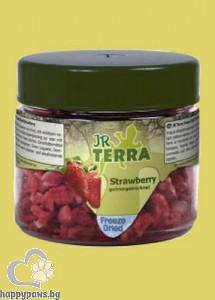 JR Farm - Замразени и сушени ягоди, 10 гр.