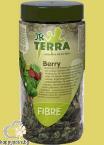 JR Farm - Листа от ягоди, 25 гр.