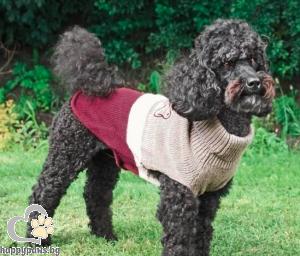 TRIXIE - Пуловер Калгари, 30 см.