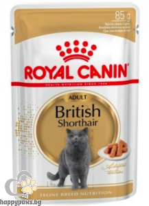 Royal Canin - British Shorthair Pouch пауч за израснали котки над 1 година порода британска късокосместа 85 гр.