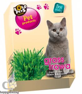 Lolo - котешка трева, 100 гр.