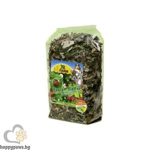 JR Farm - Ягодоплодни листа за гризачи, 100 гр