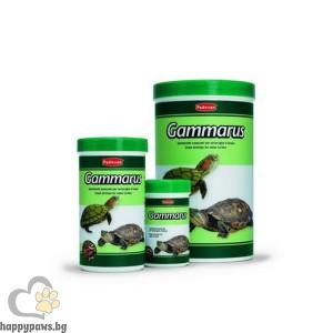 Padovan - Gammarus Храна за костенурки (скариди)