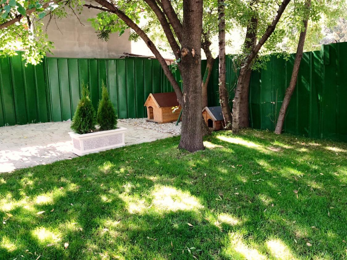 Зелена трева и дървета в градината