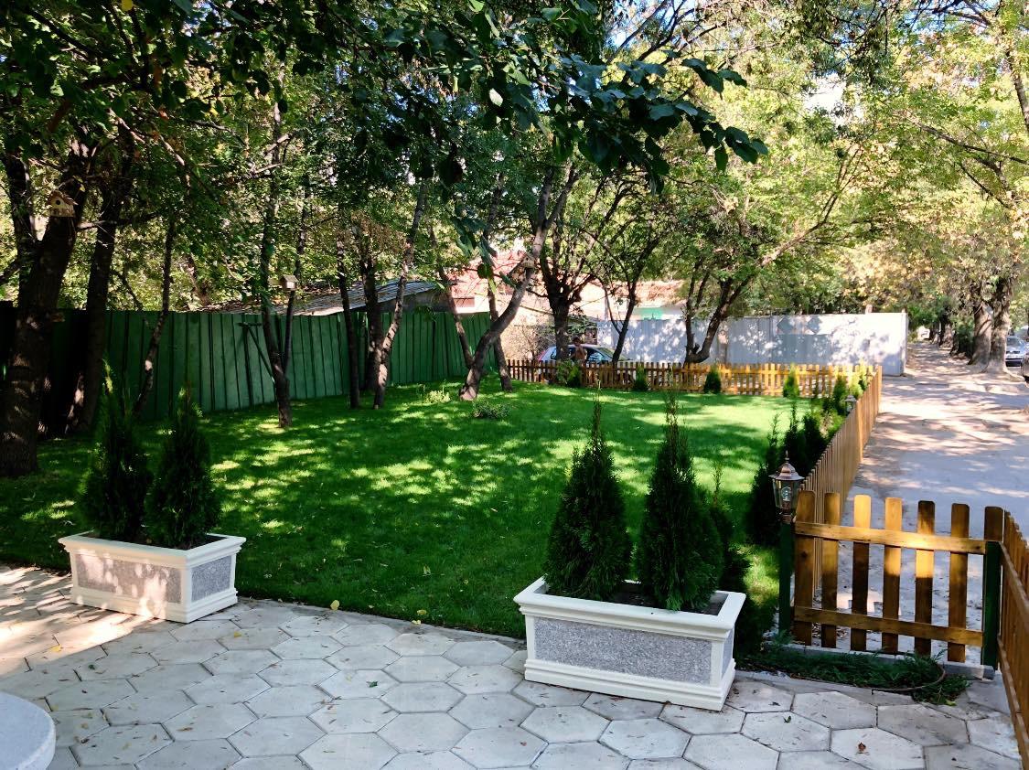 Лятната градина на груминг Хепи Палс