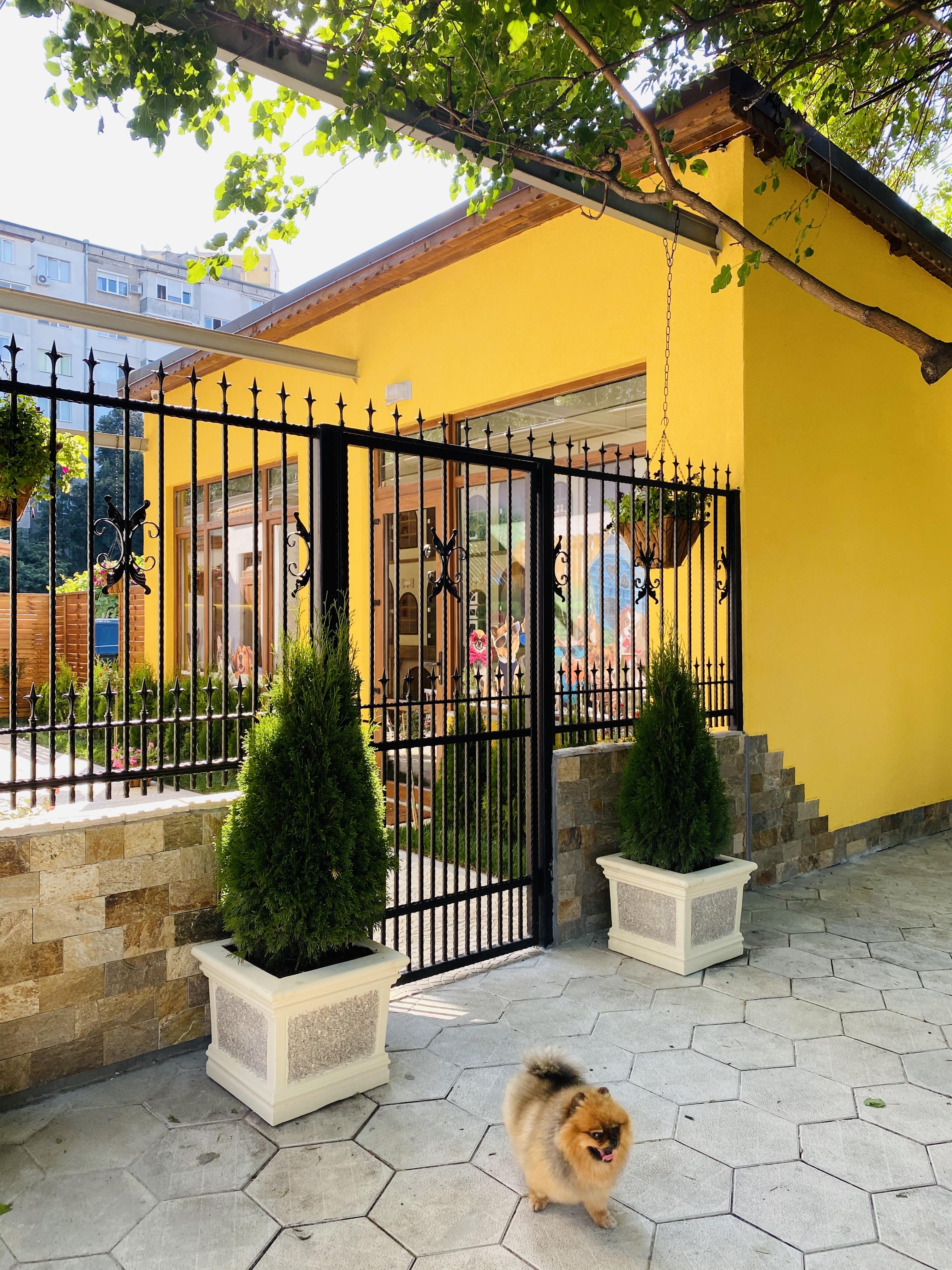 Вратата към Тайната градина