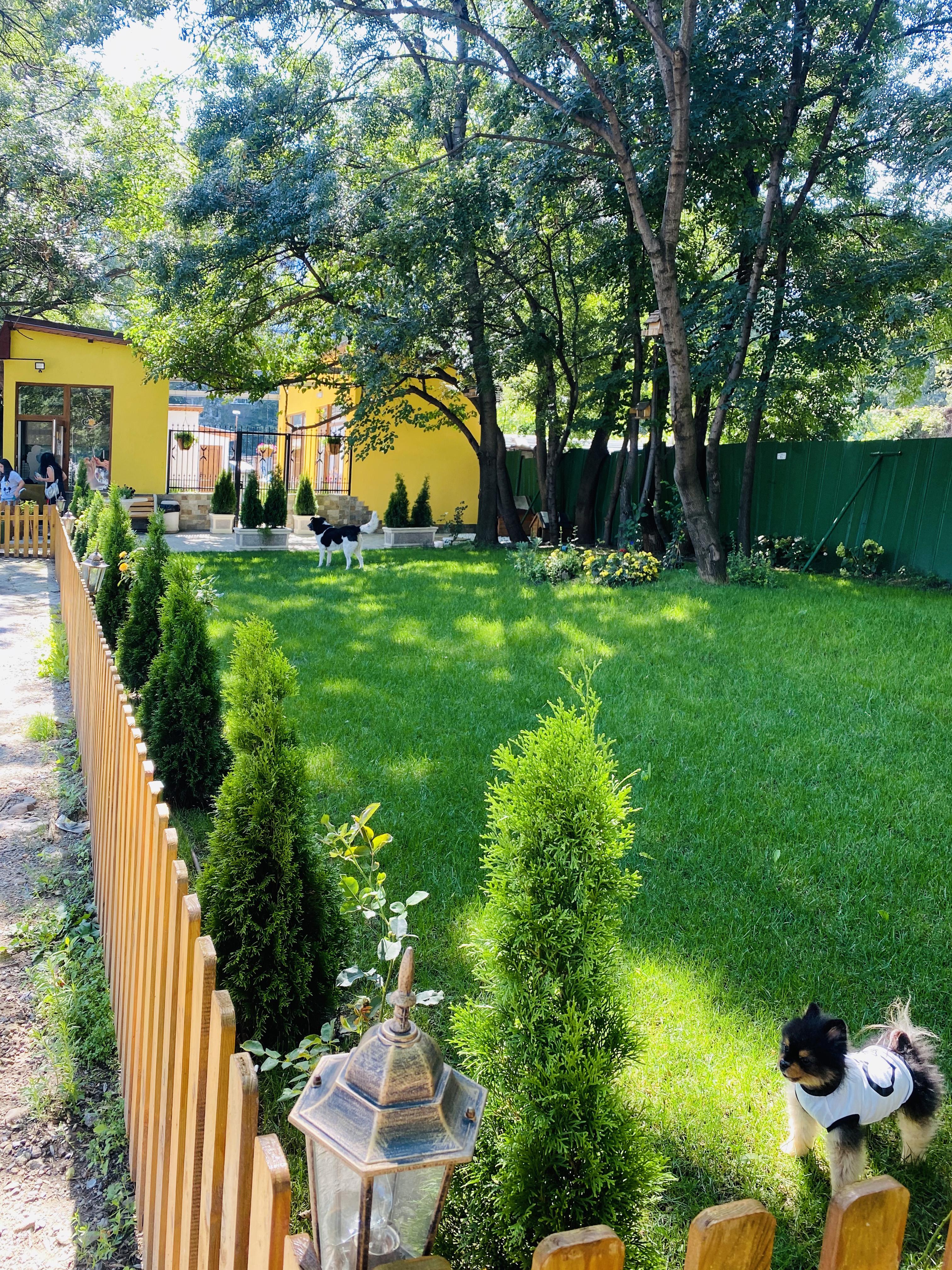 ВИП парк