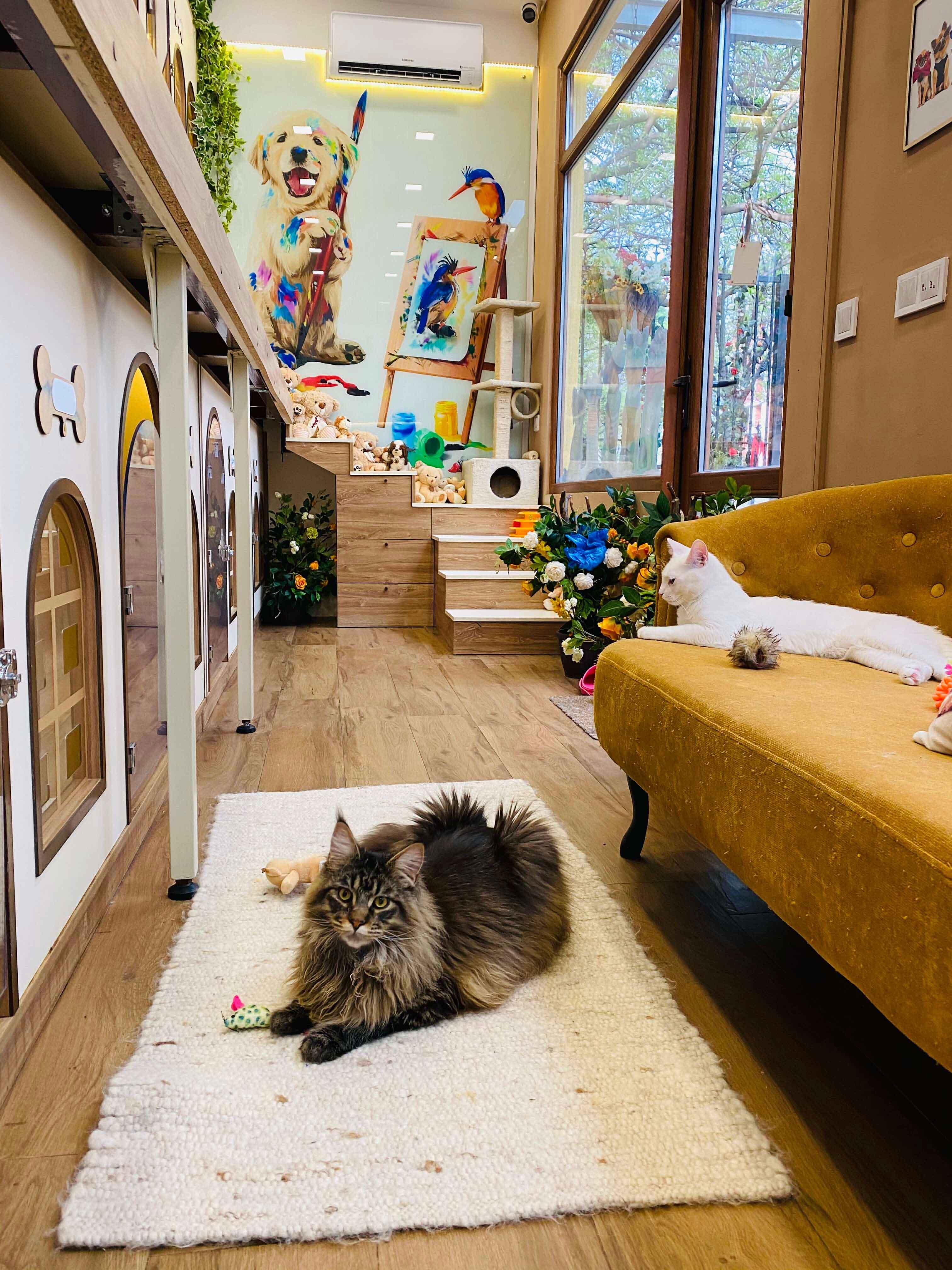 Уютно като у дома дори и за по-екзотичните ни гости!
